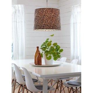Aktuálně - Leopard v kuchyni ? Proč ne.